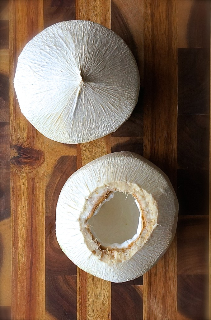 Cultured Coconut Yogurt