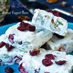 Cranberries and Snow Freezer Coconut Yogurt Bars